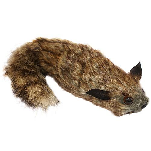 The Raccoon bei Zaubershop Frenchdrop