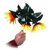 Welckender Sonnenblumen Strauss - Drooping Sunflower Bouquet | Zaubertrick